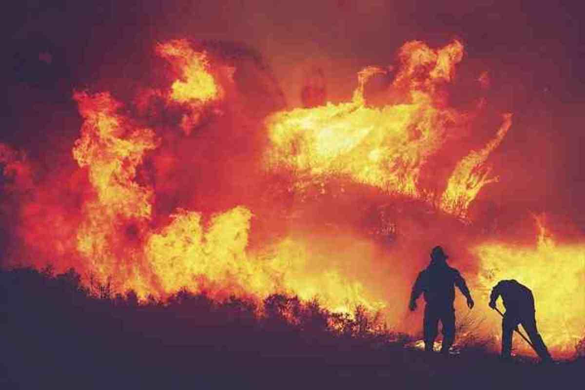 fire-of-australia