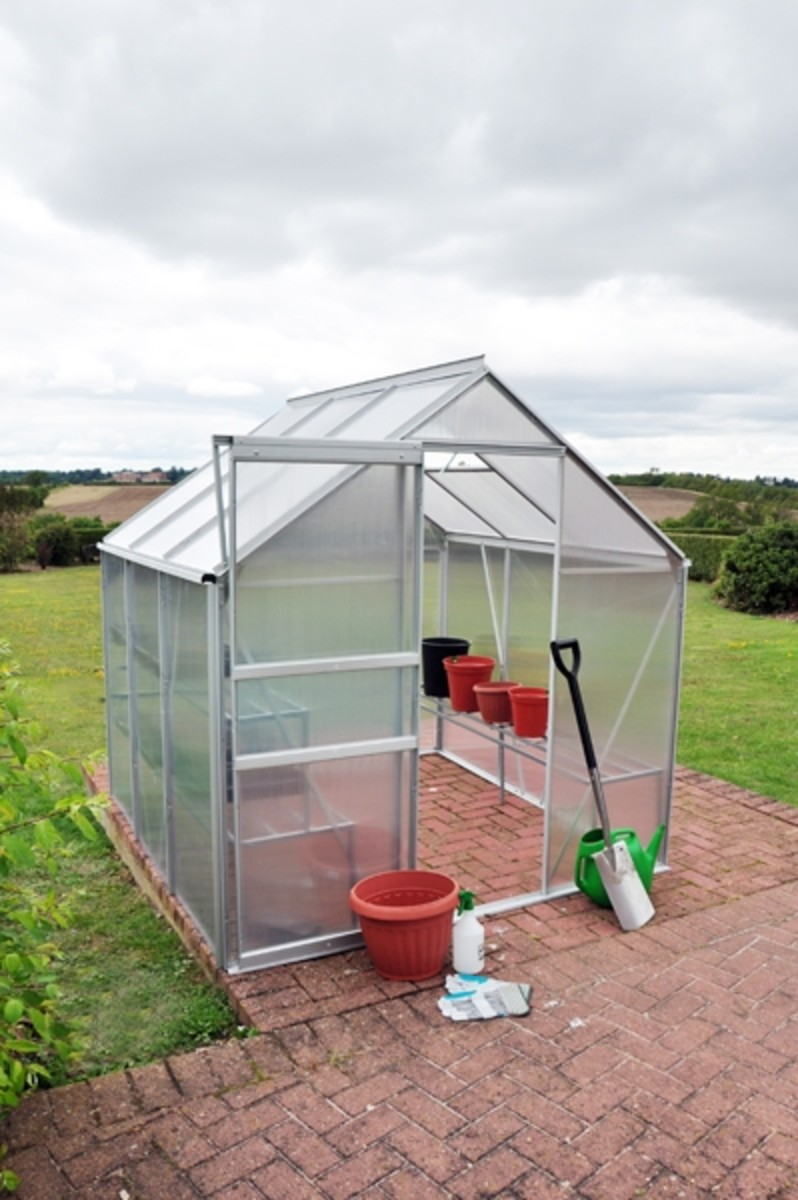 Kingfisher 6x6 Greenhouse Silver
