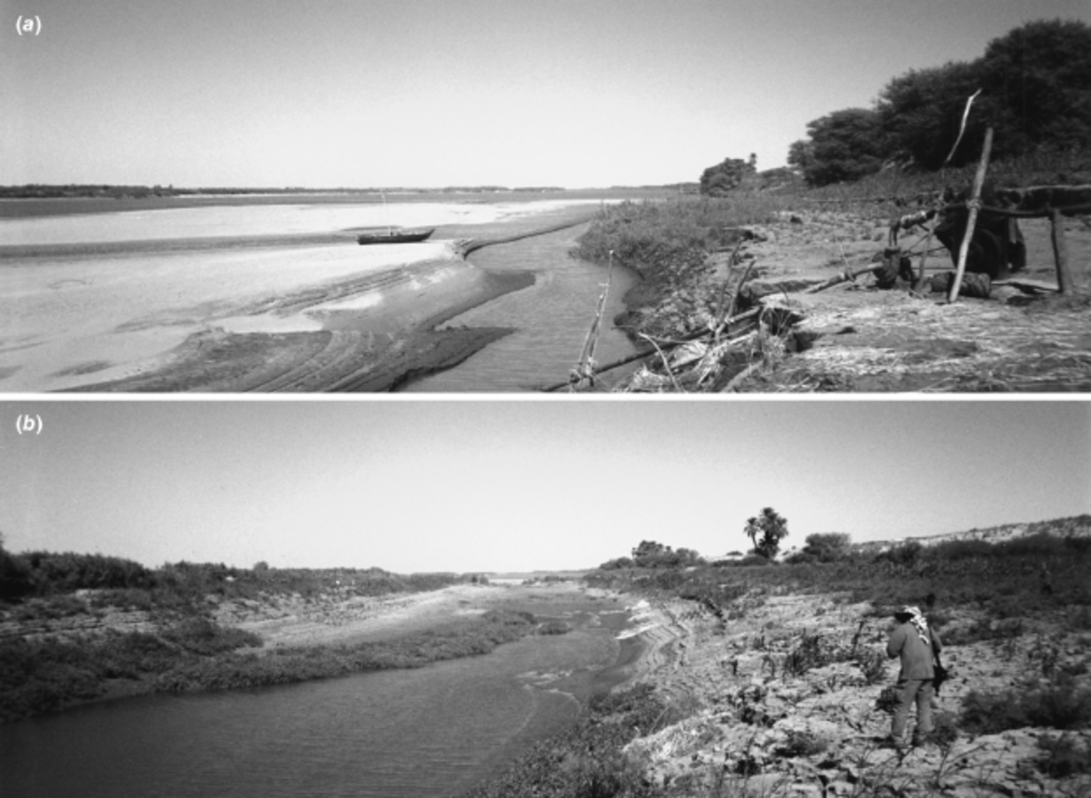 Geomorphology of the Nile channel complex in the Dongola Reache in northern Sudan at low flow. (a) A large sand bar and thick channel margin flood deposits. (b) A flood channel to the east of the main Nile. View looking downstream in each case, 1997.