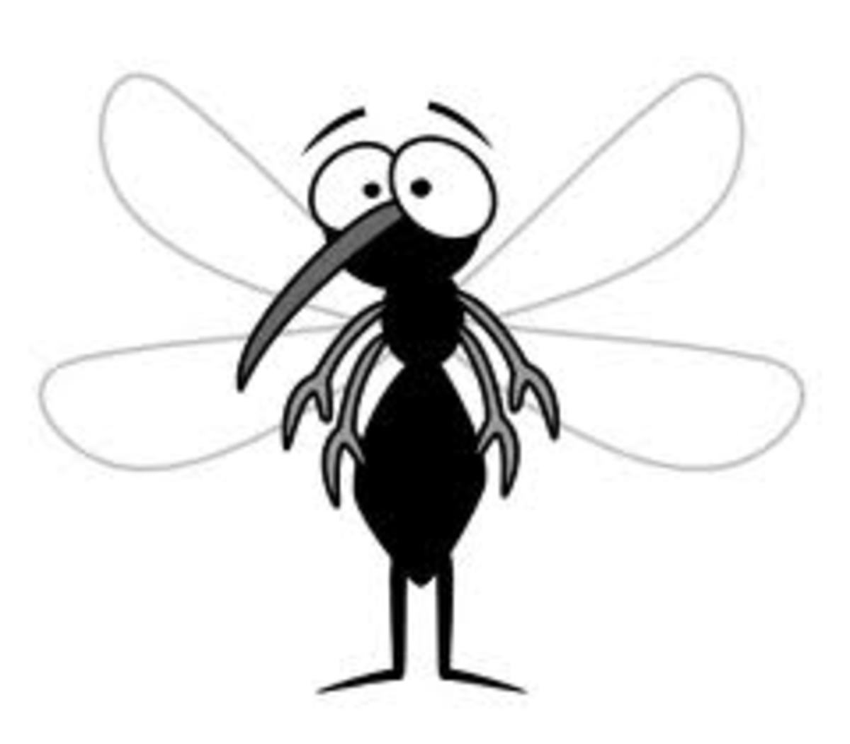 Essential Oils That Repell Mosquitoes
