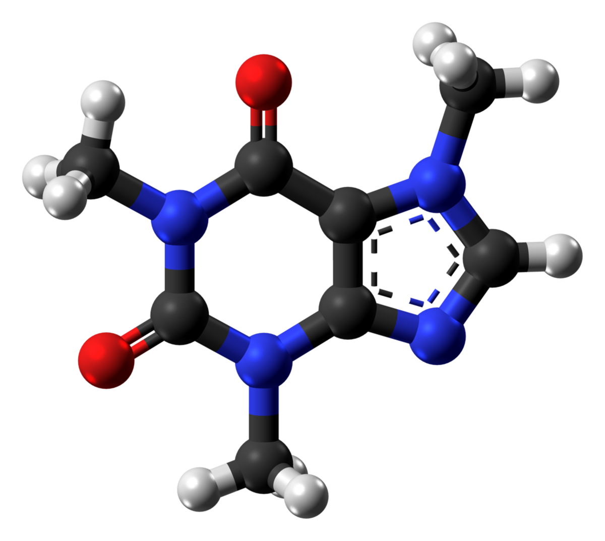 A ball-and-stick model of a caffeine molecule