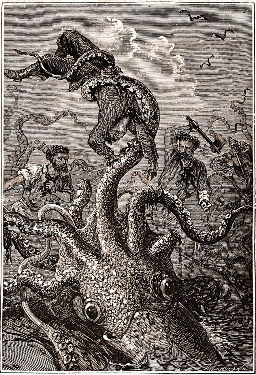 Even if not the Kraken, a giant squid is a sea creature worthy of any nightmare.