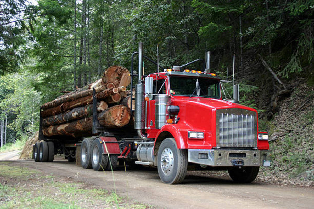 Typical logging truck