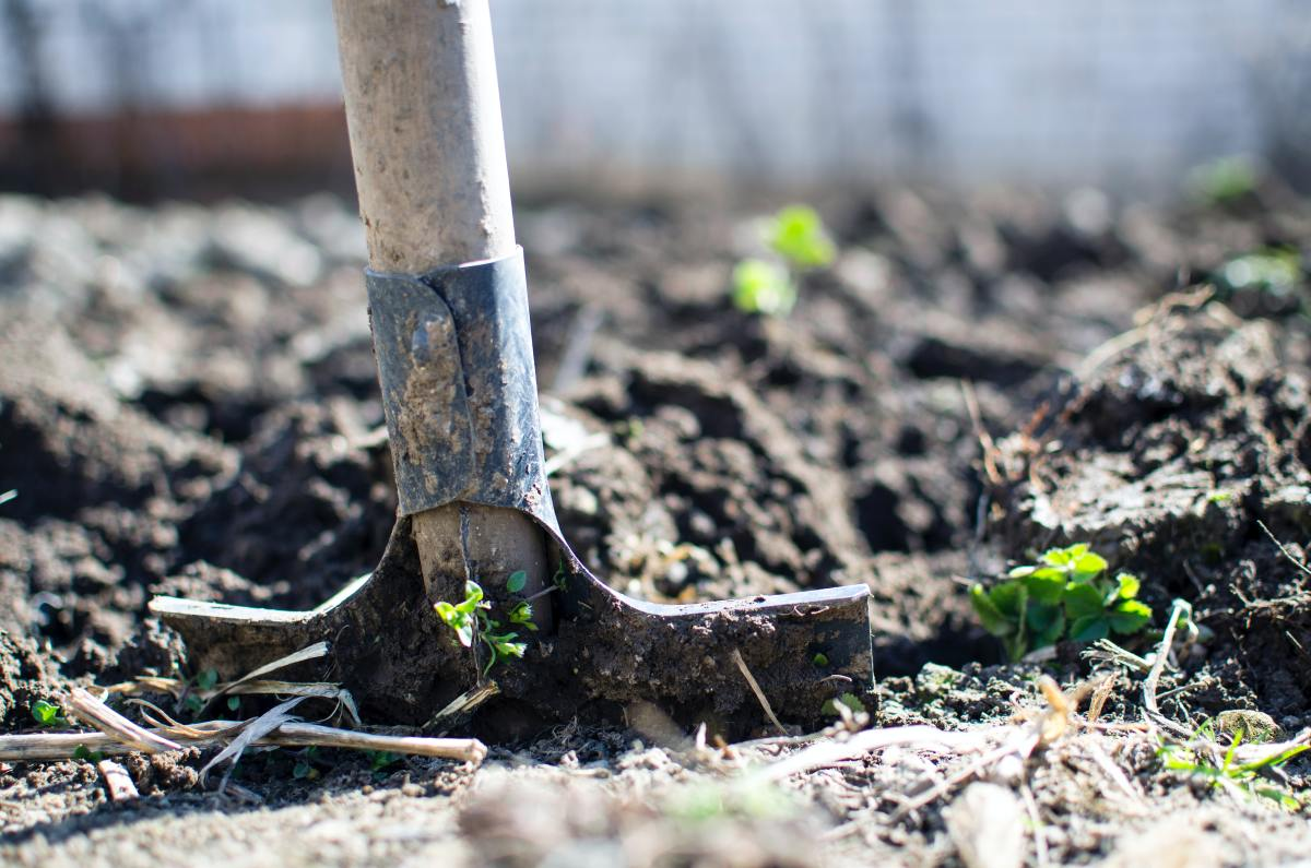 Learn about different soil types to grow a successful garden.
