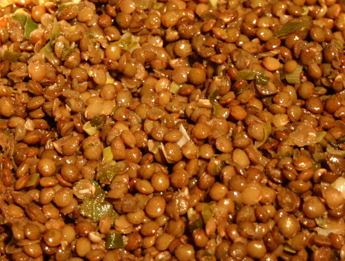 Cooked Brown Lentils