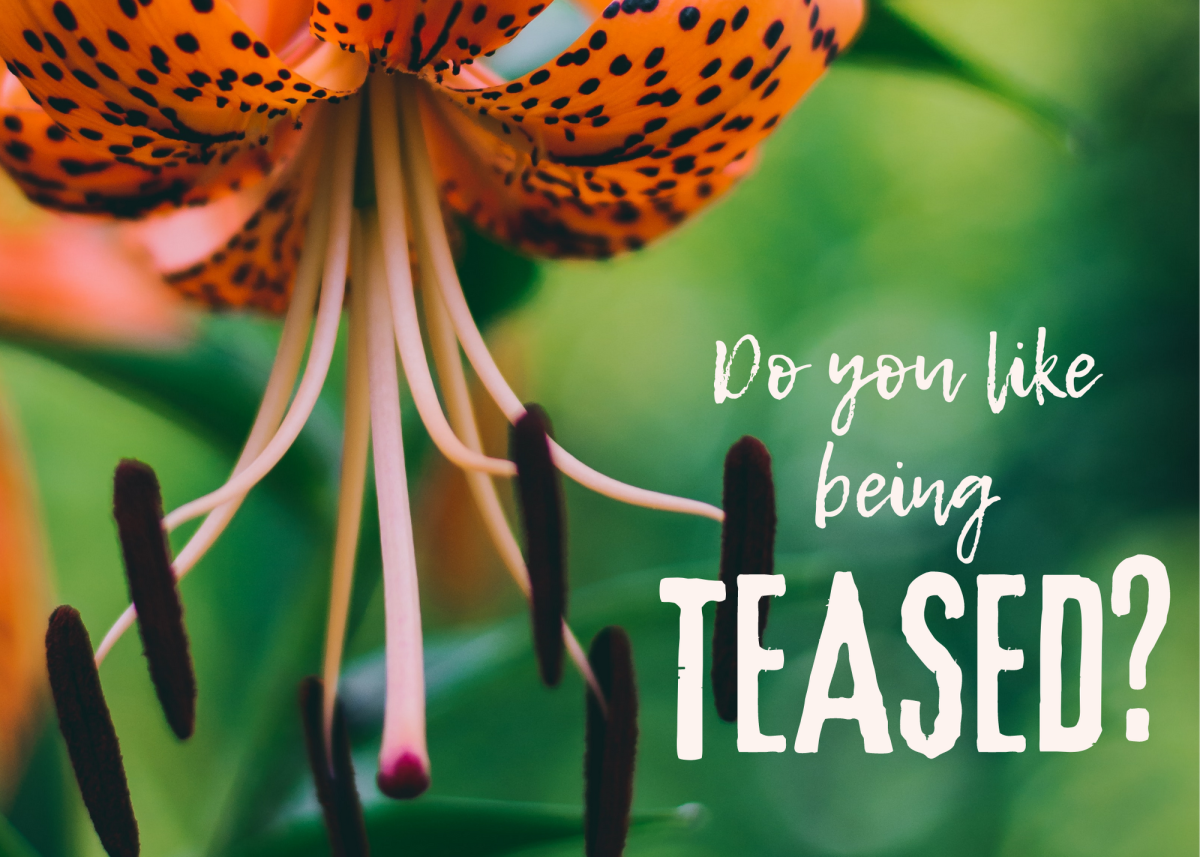 How long do you want me to tease you?