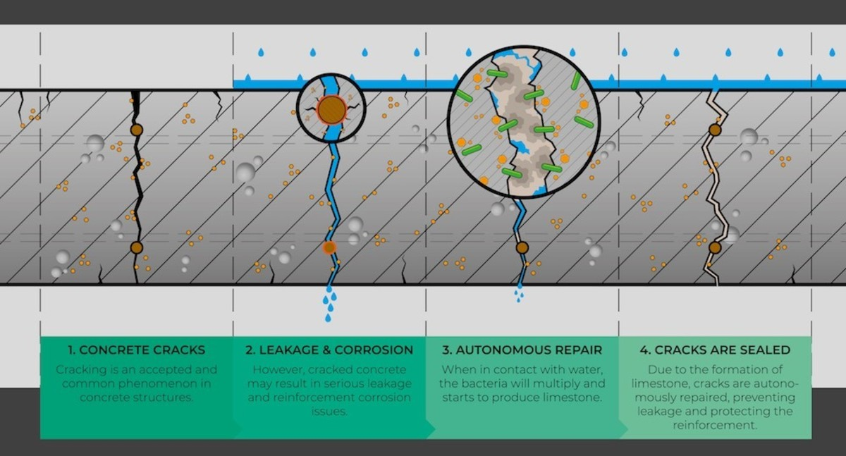 microbes-produce-sustainable-concrete-from-carbon-emissions