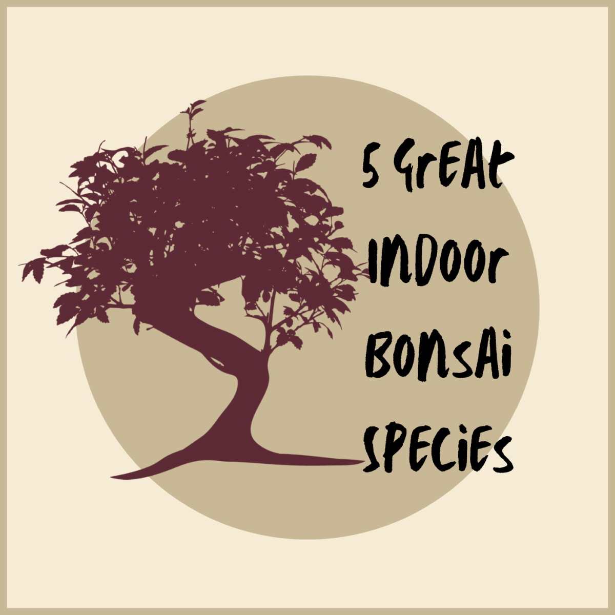 Check out which five bonsai species are great for indoors.