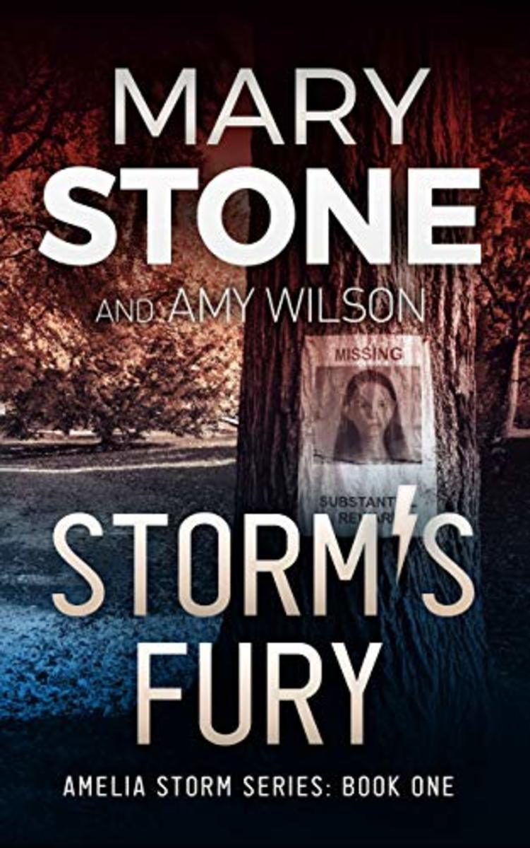 The first book of Amelia Storm