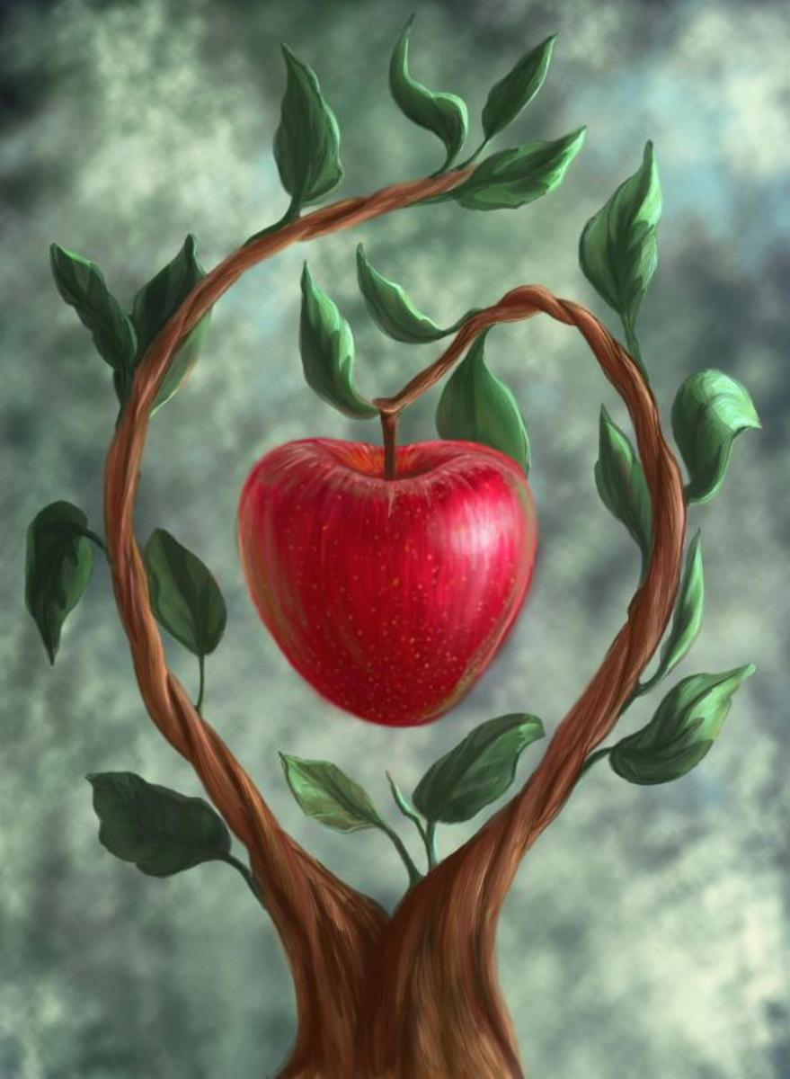 what-is-he-fruit-that-adam-eve-ate
