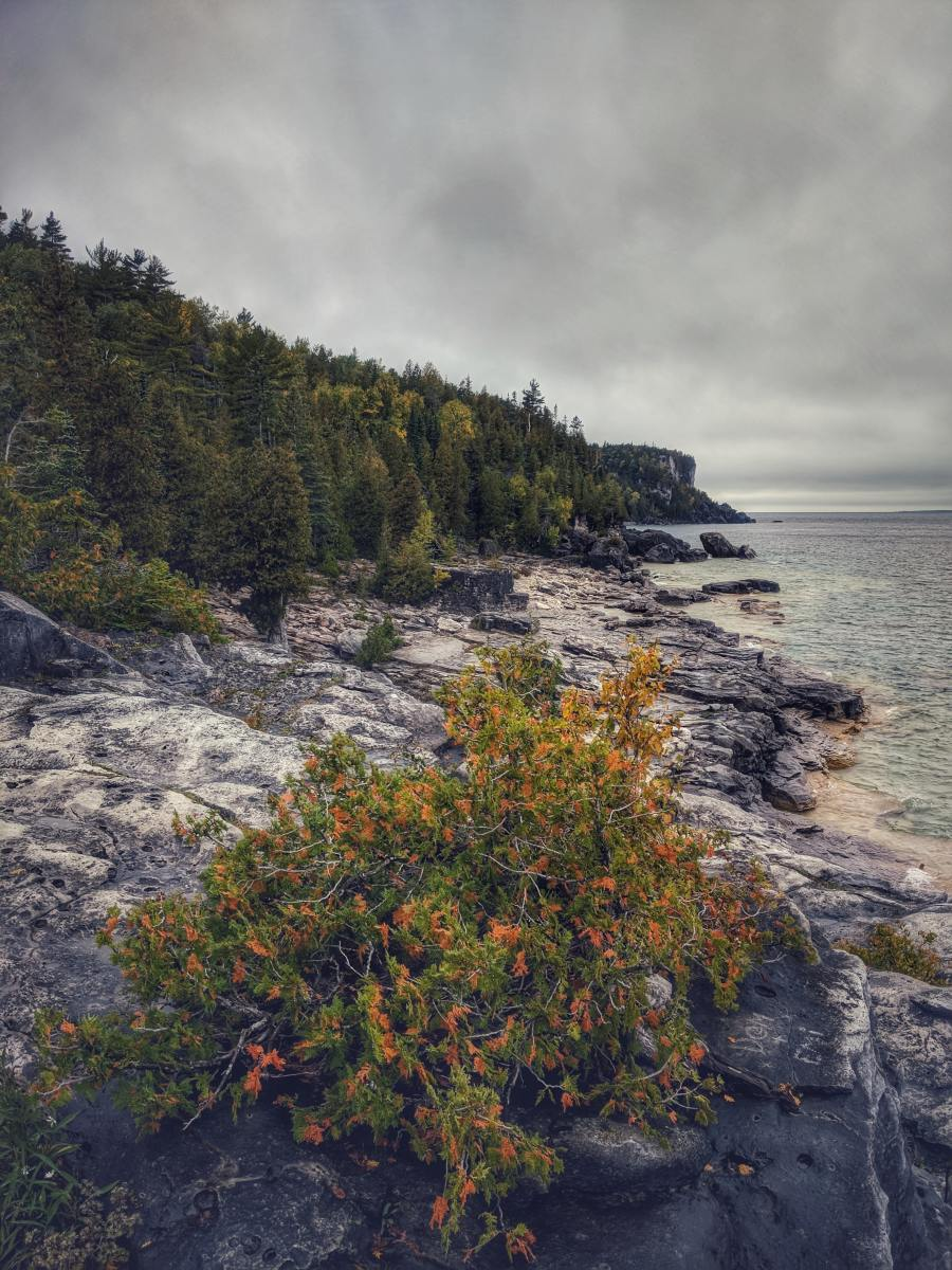 Bruce Trail, Tobermory, ON, Canada