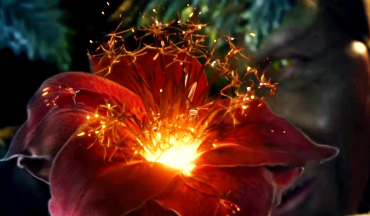 glowing flowers.