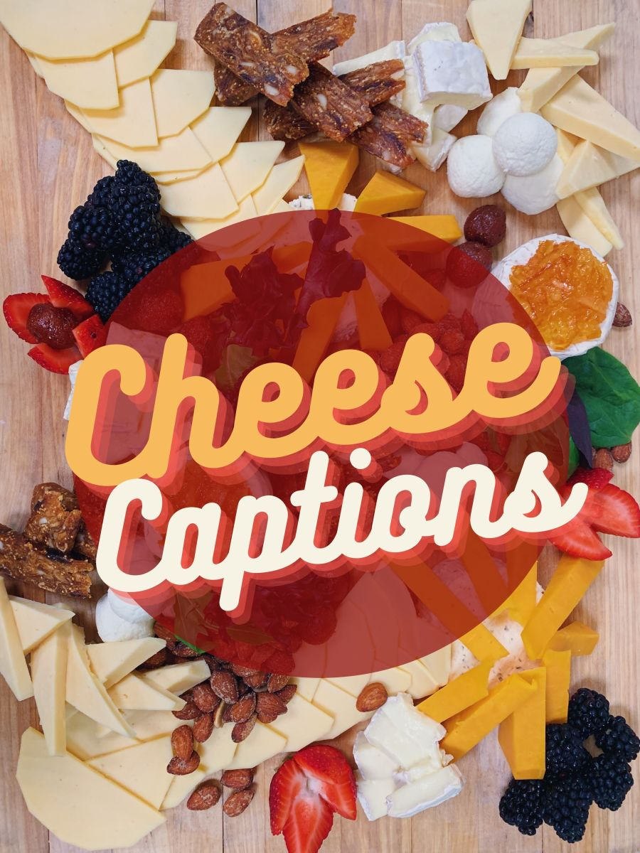 Cheese Quotes and Caption Ideas
