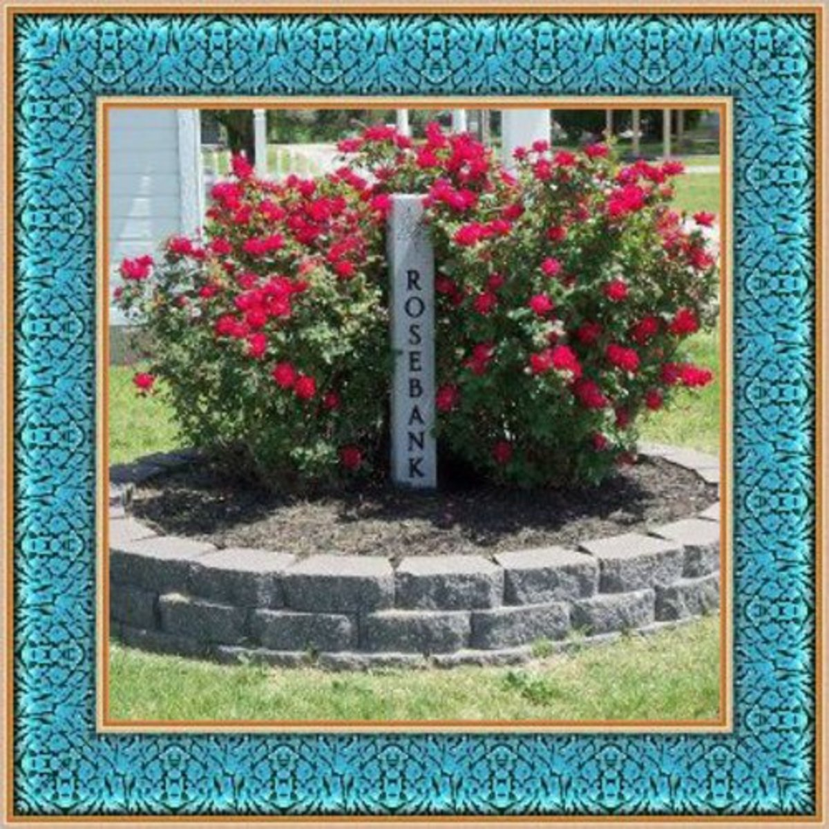Genealogical Records for Rose Bank and Other Cemeteries