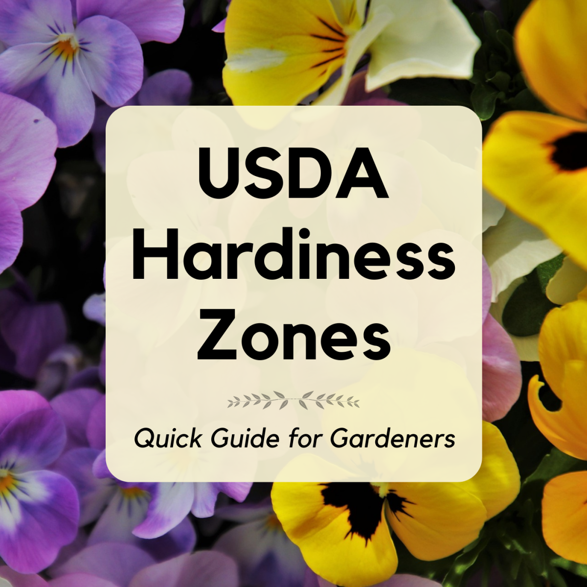 Learn about the USDA plant hardiness zones, also called growing zones. Explore the different zones in North America.