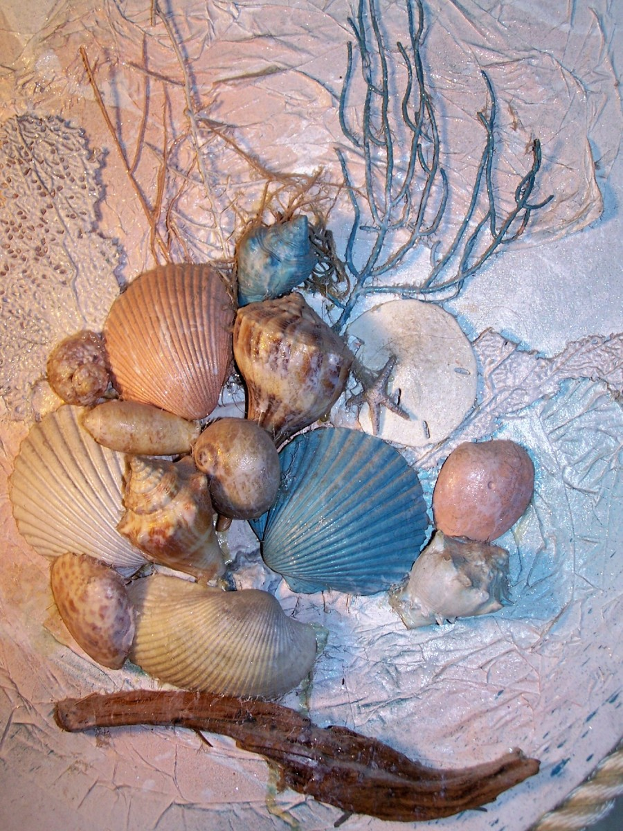 Up close, detailed photo of sea shell art, showing placement of shells, grasses, textured tissue paper, driftwood, etc.