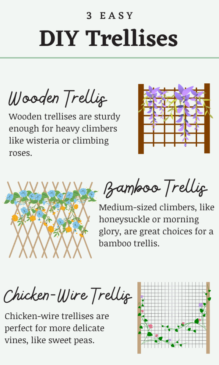 Trellises are fun to make and provide a great way to add a splash of color to your balcony.