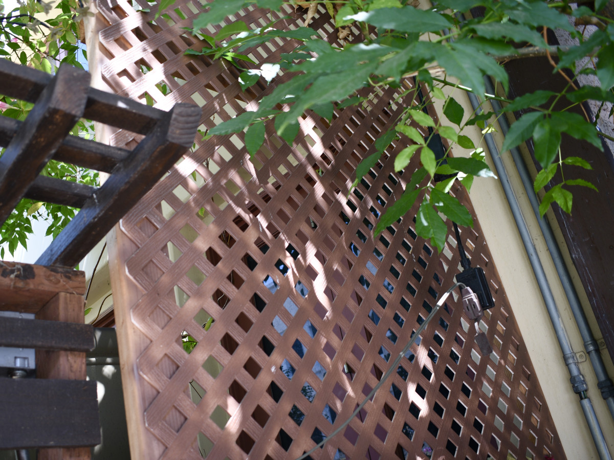 Trellises can be used on balconies to decorate a wall or to create a privacy screen against the railing. They're easy to build yourself. It's also easy to find a DIY kit to put together.
