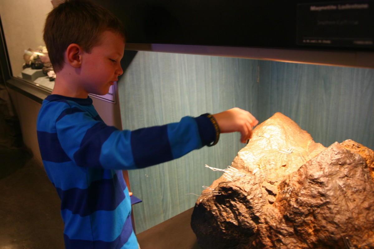 Attaching paper clips to a large magnetic stone at the Natural History Museum.