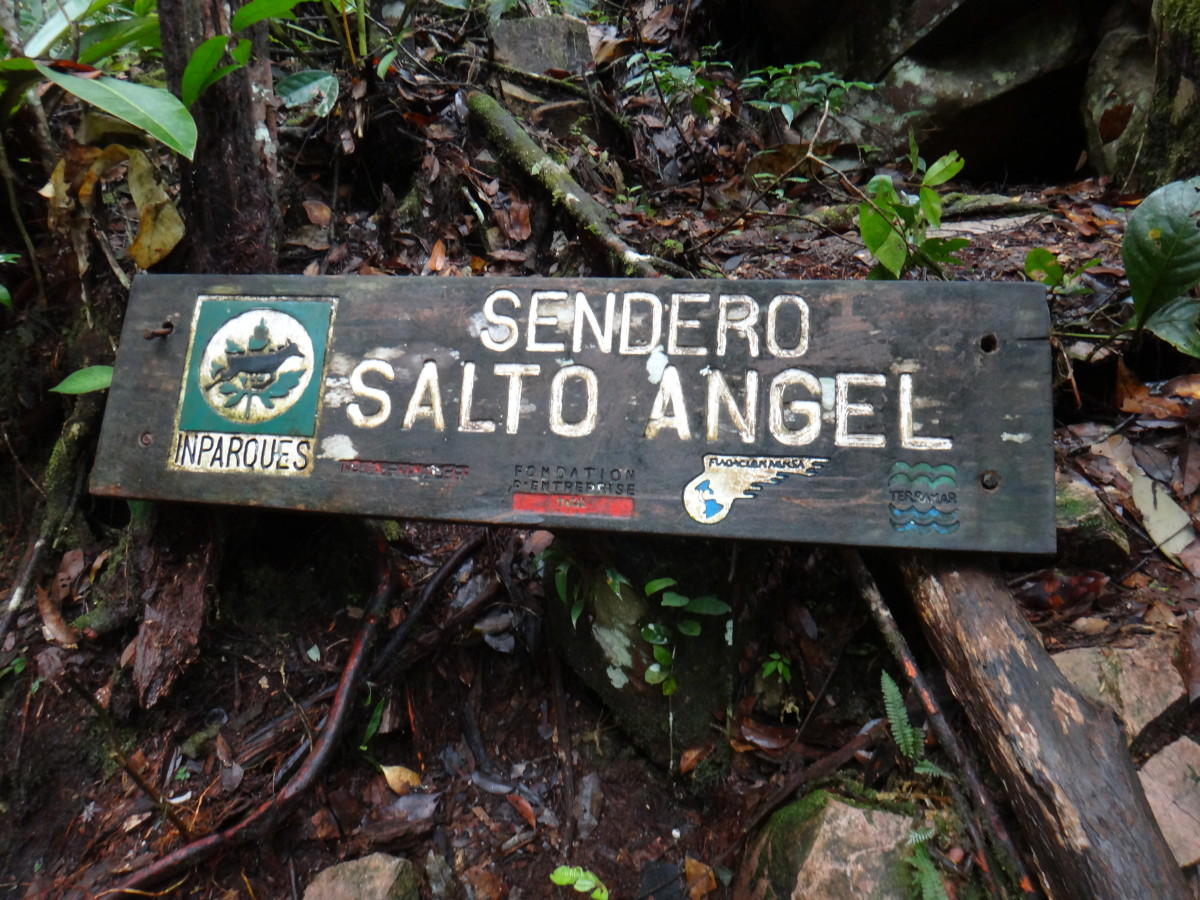 The trail up to the base of Angel Falls