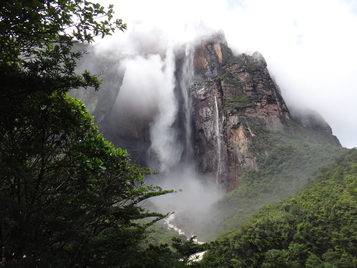 Birding in Venezuela: Angel Falls and Laguna Canaima