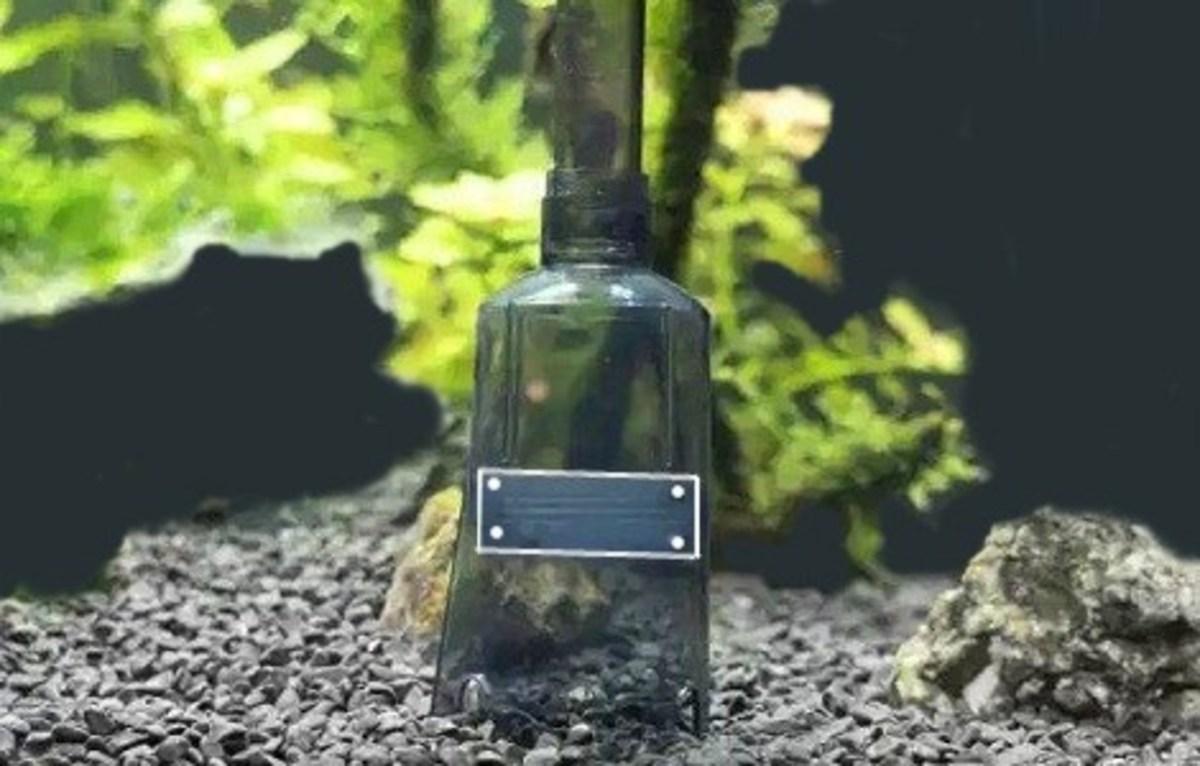 Vacuuming Fish Tank