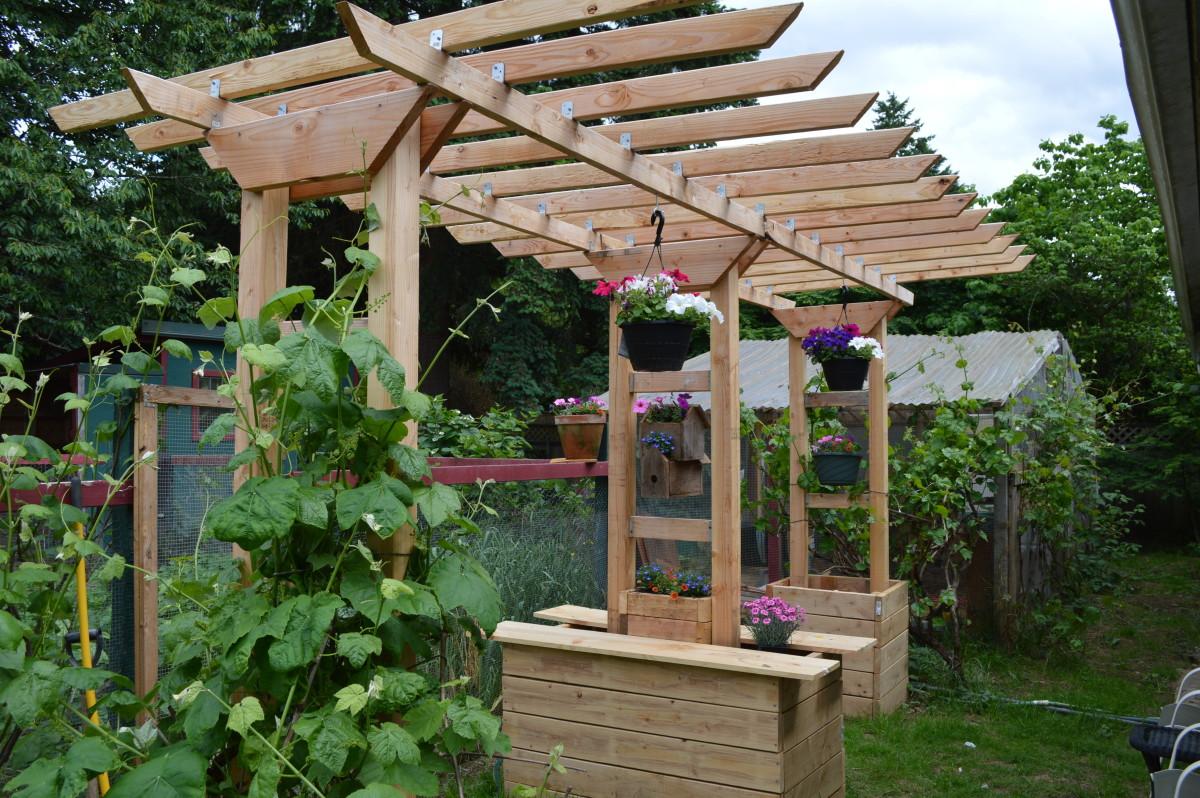 The grape arbor