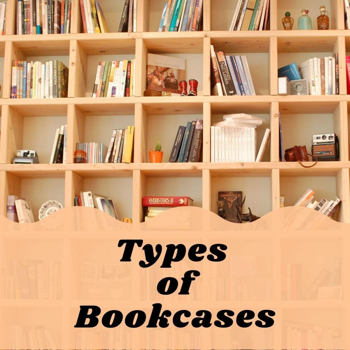 There are so many different styles of bookcases!