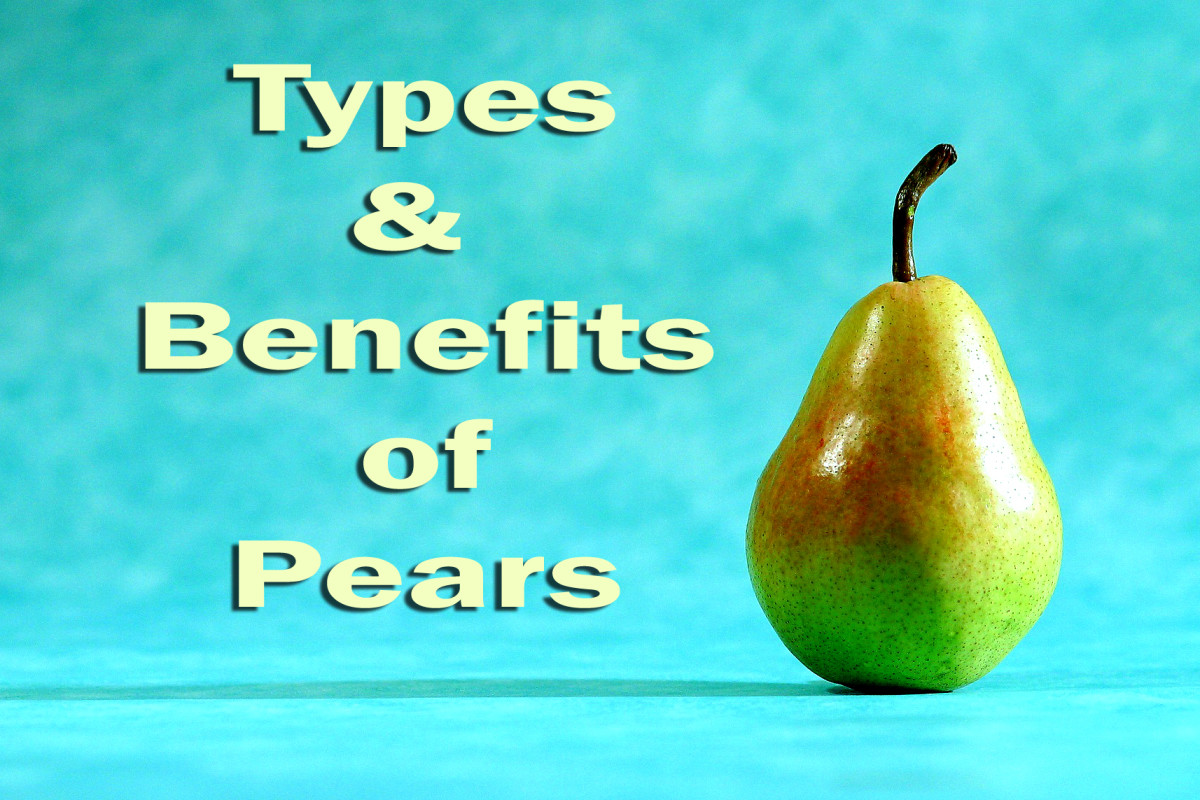 the-amazing-pear-a-diverse-and-healthy-fruit