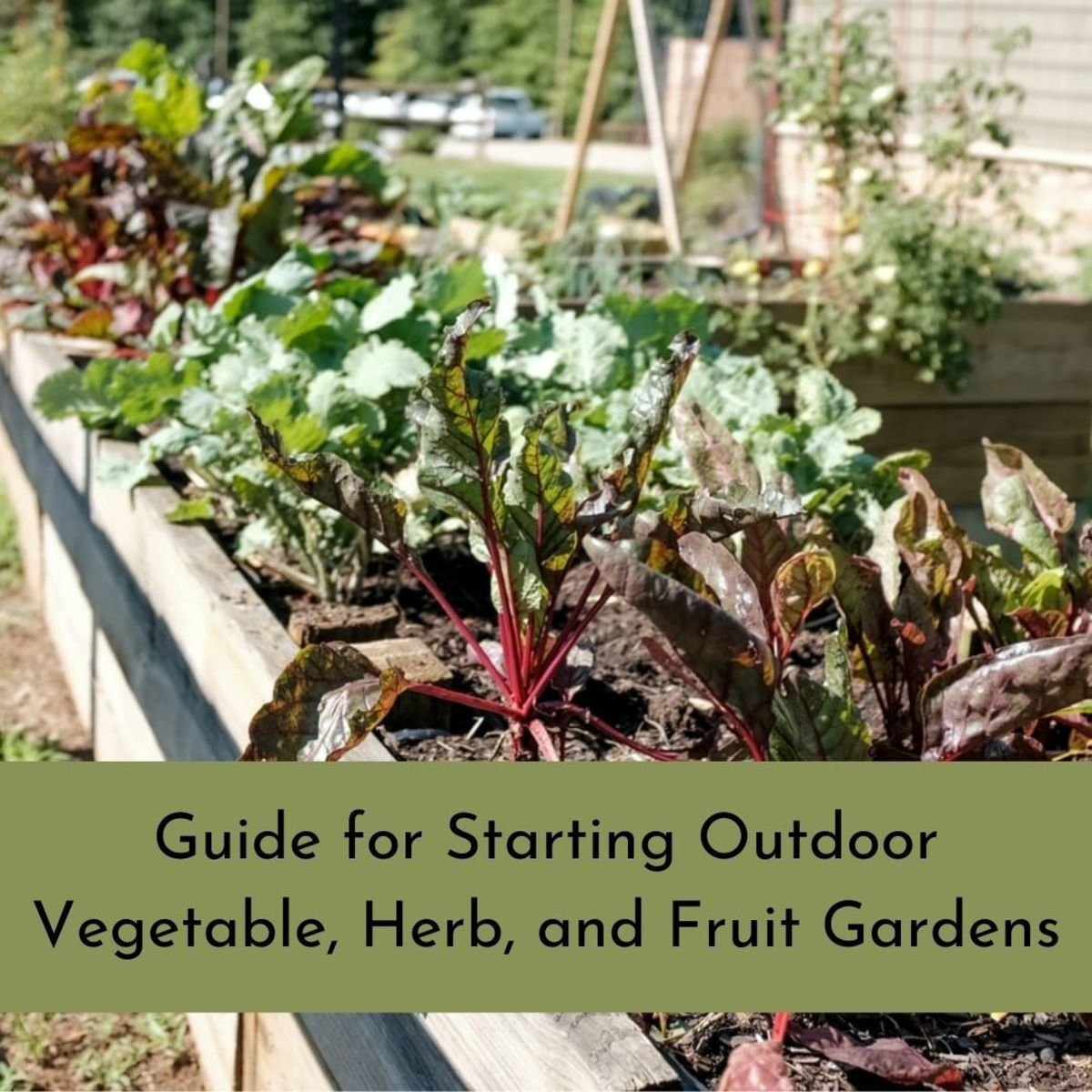 The spring is when outdoor gardens need to be planted and nurtured.