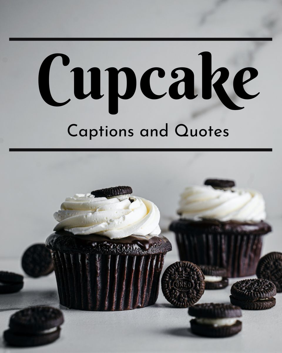 Cupcake Quotes and Caption Ideas