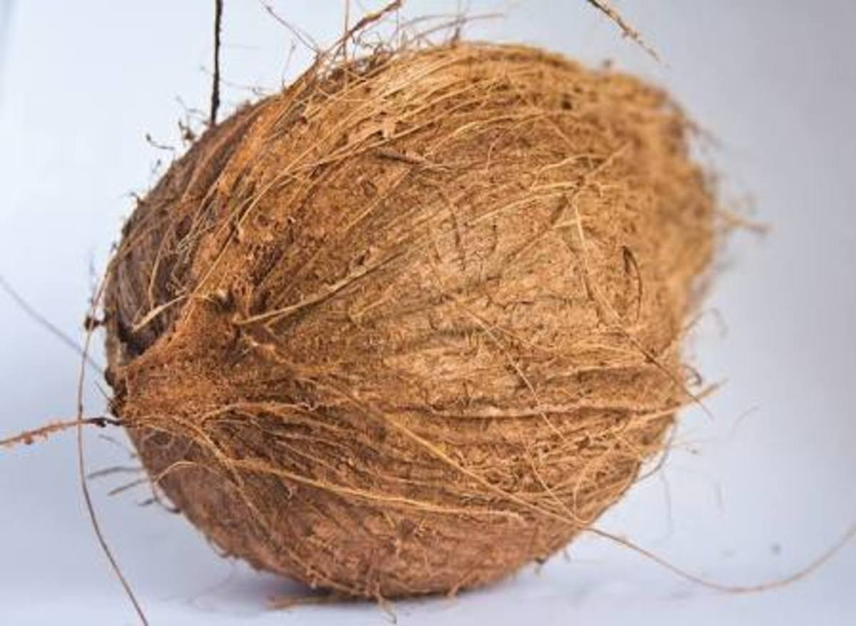Coconuts are healthy natural foods