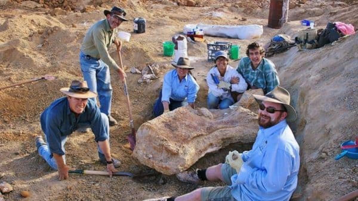 new-dinosaur-species-found-in-australia-meet-cooper-the-biggest-dinosaur-to-wander-the-landmass