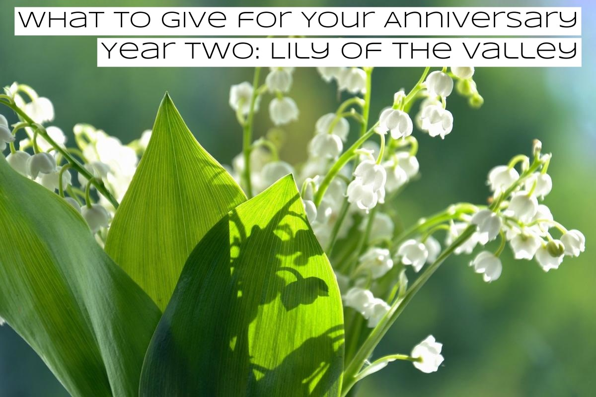 Lily of the valley is also called glovewort or Apollinaris.