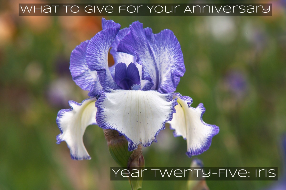 25 even is the silver anniversary. It's for silver wreath crowns. It's for the iris, and the goddess Iris who guides people to a paradise.