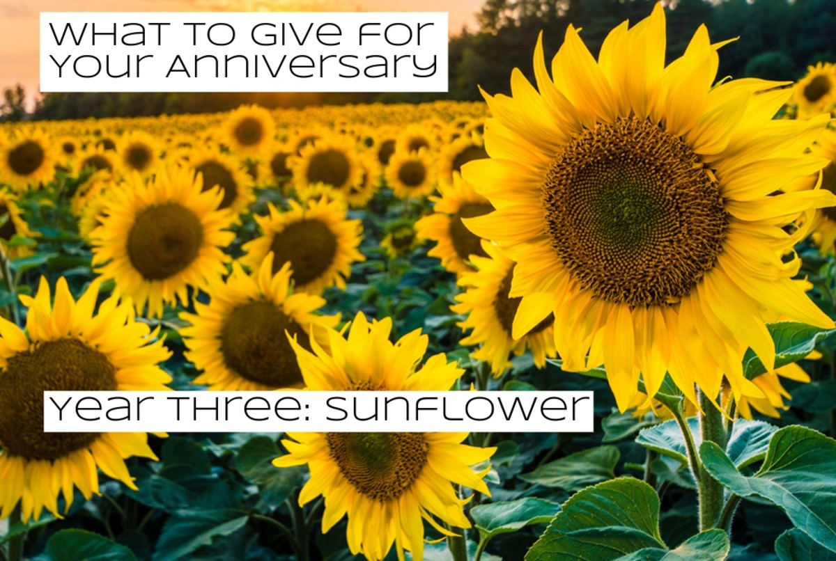 Sunflowers were first domesticated in Mexico and the Southern United States.