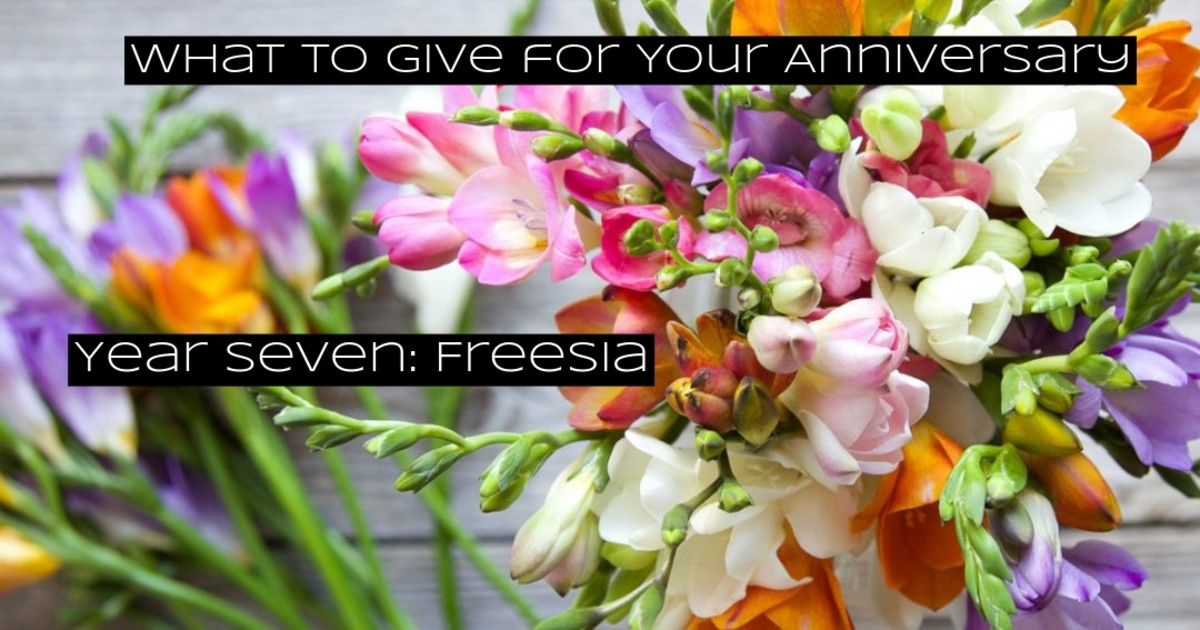 Freesia flowers are beautiful. The flowers remind you to persevere, to be more vulnerable, to allow yourself to bend.