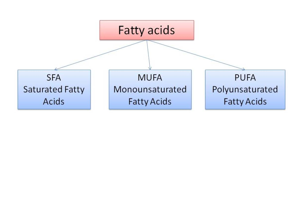 Omega-3 fatty acids keep the body Healthy