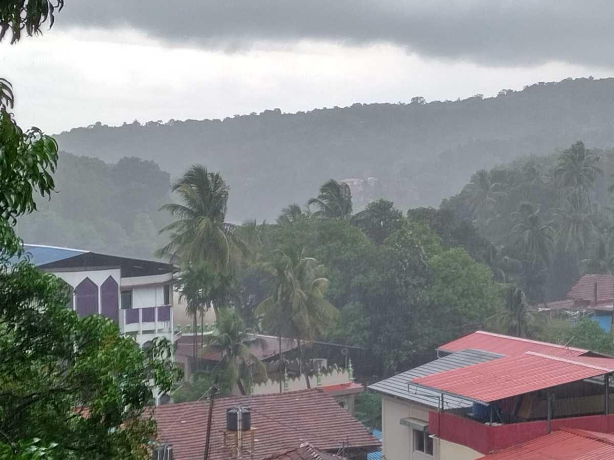 A Rainy day at my native place (Maharashtra,India)