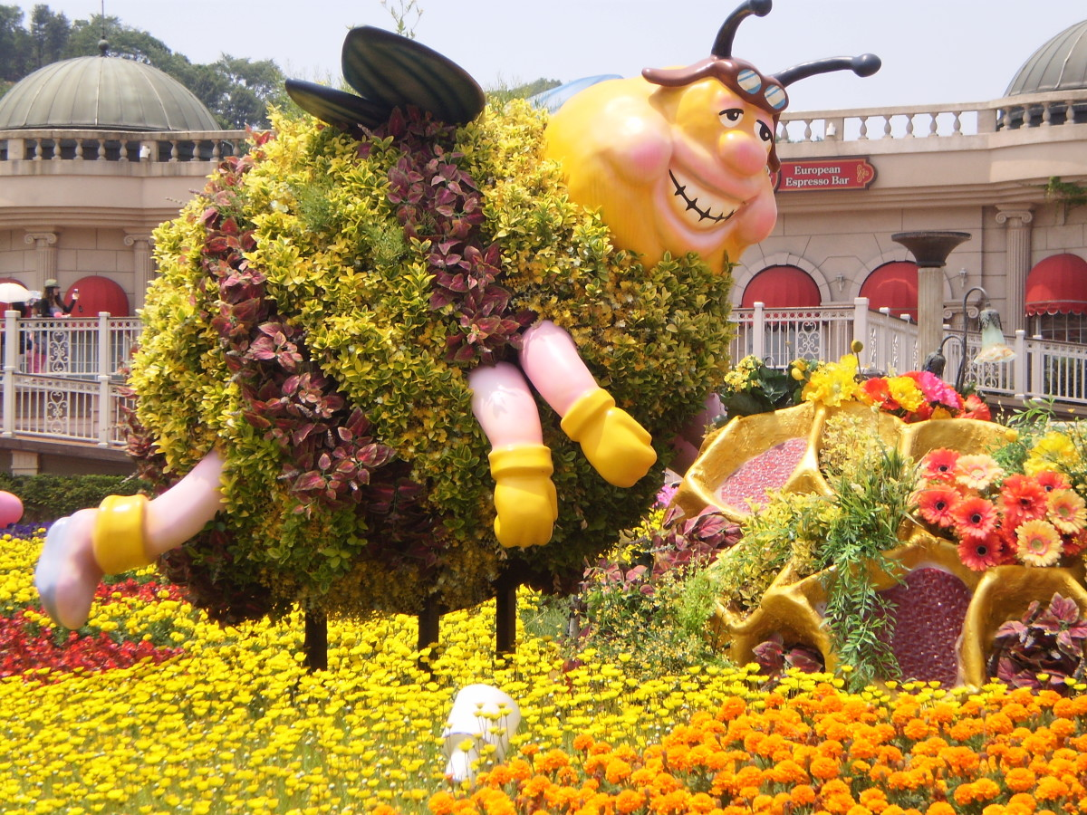 See beautiful gardens at Everland and ride on thrilling rides.
