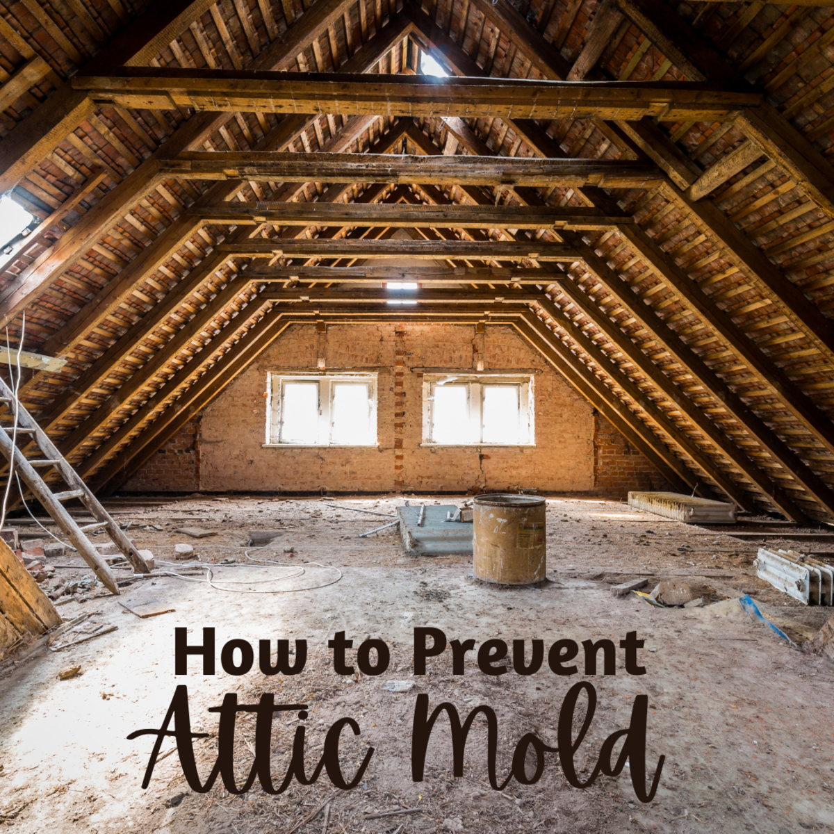 How to prevent mold from growing in your attic (if it isn't already there)!