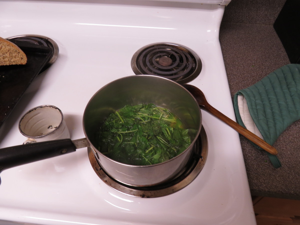 "Making Lemon Balm ""Tea"""