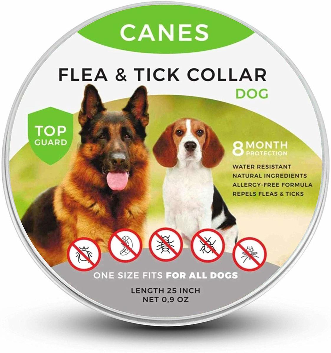 tick and flea collar