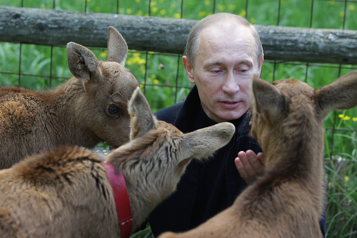 Vladimir Putin consults oracles on how to screw around with the world.