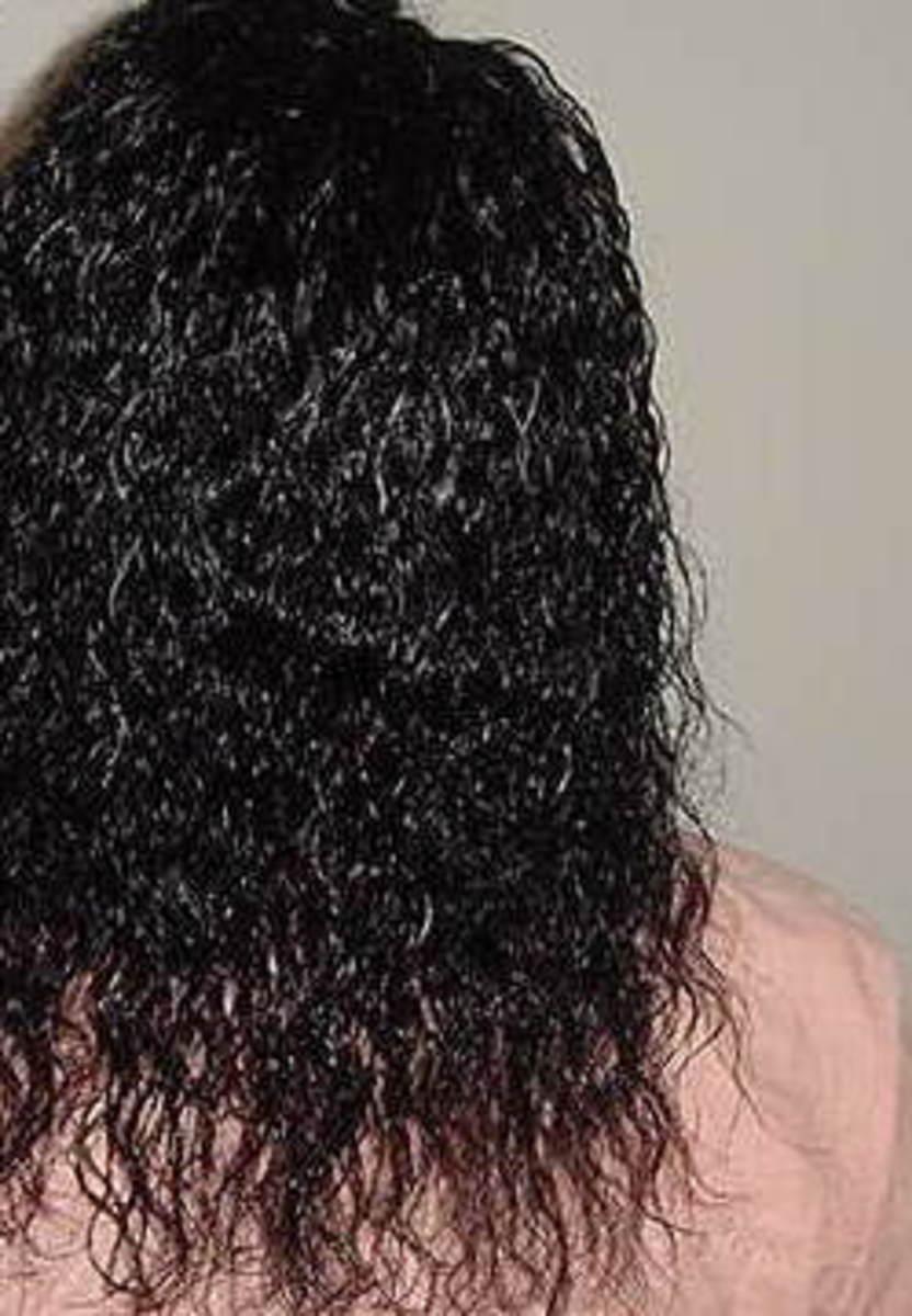Treebraids with wet n wavy human hair