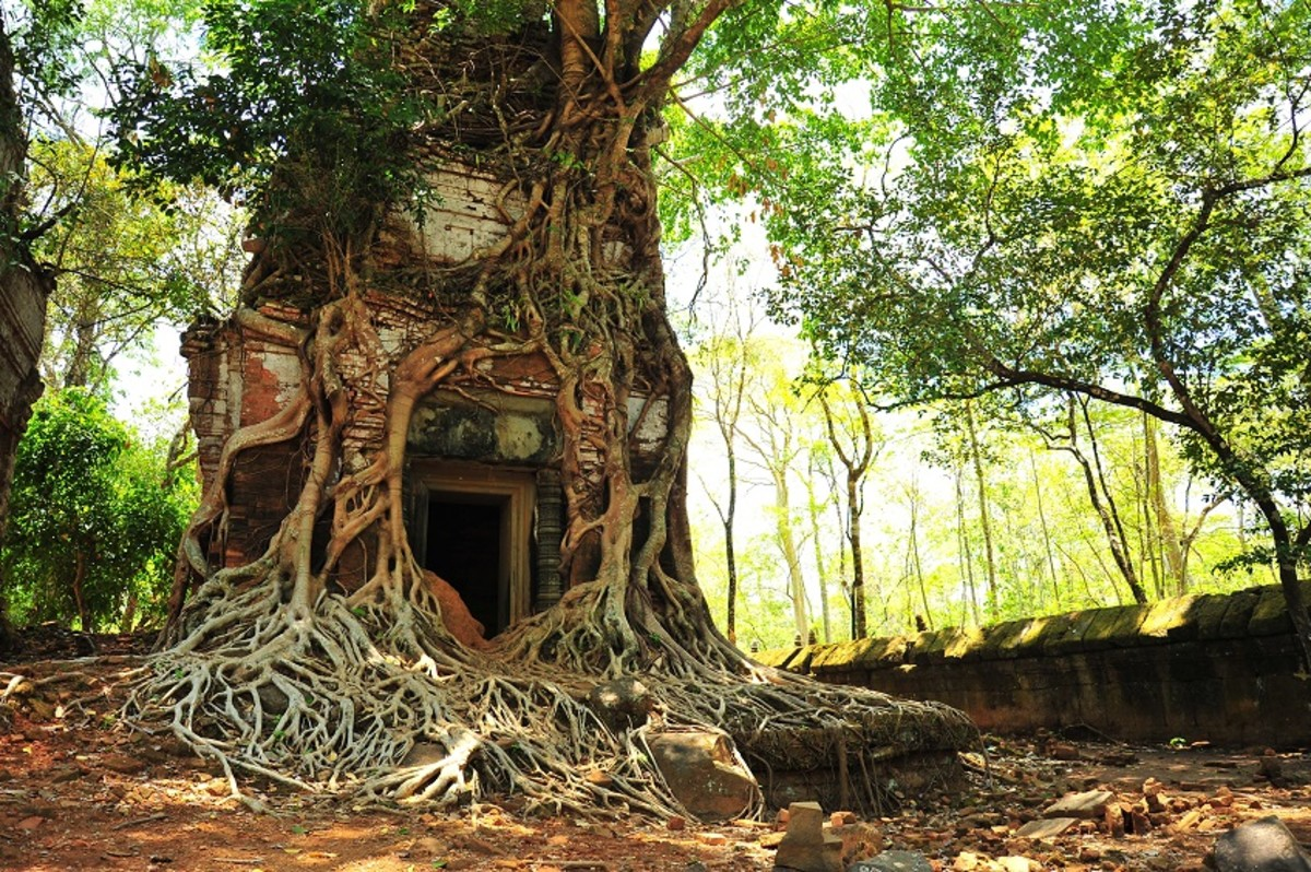9 Great Things to Do in Cambodia
