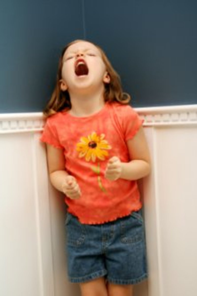 The Terrible Twos--How to Survive Them