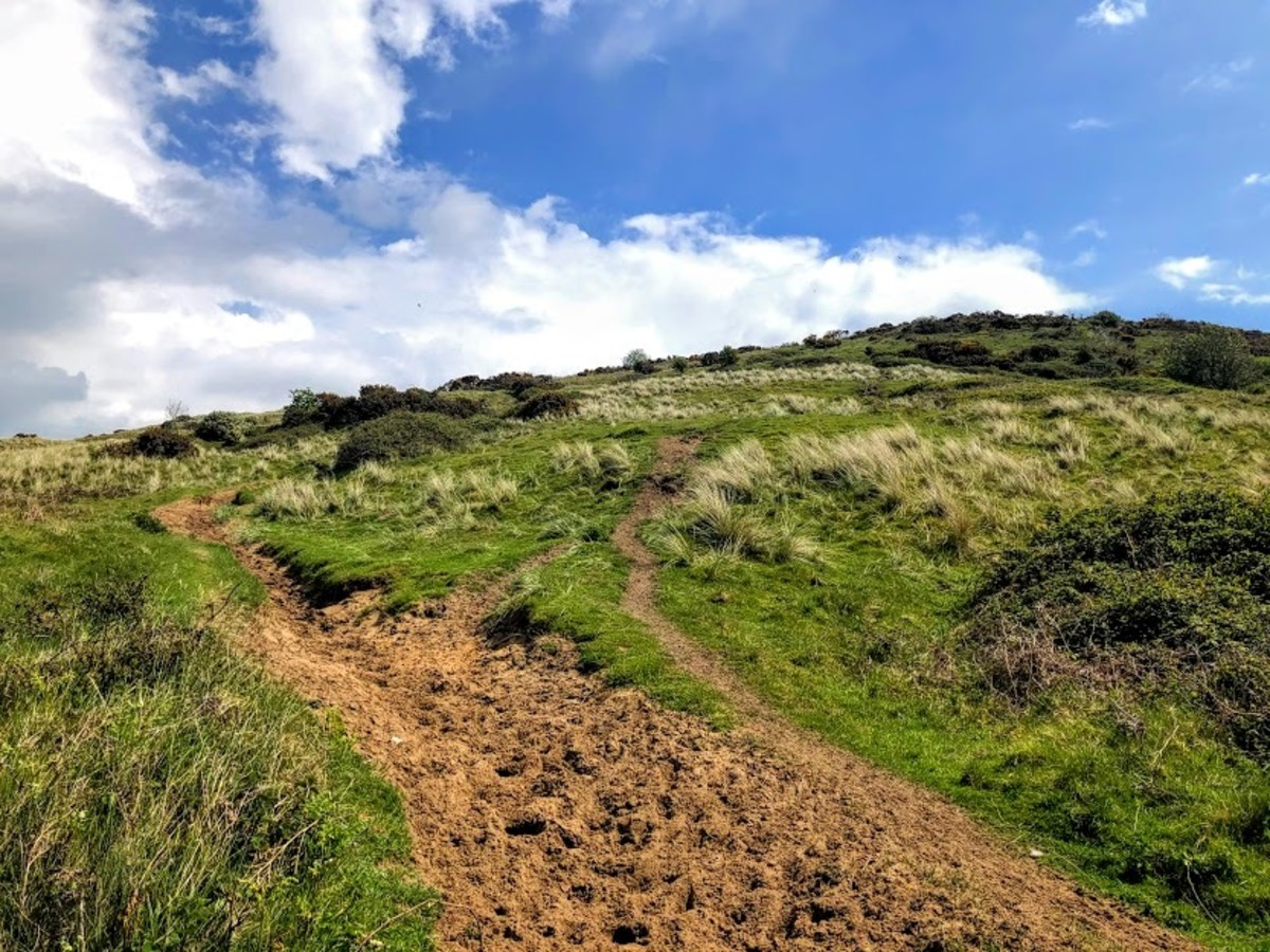 Sandy tracks, fields, muddy trails and roadside walking can all be found on this walk.