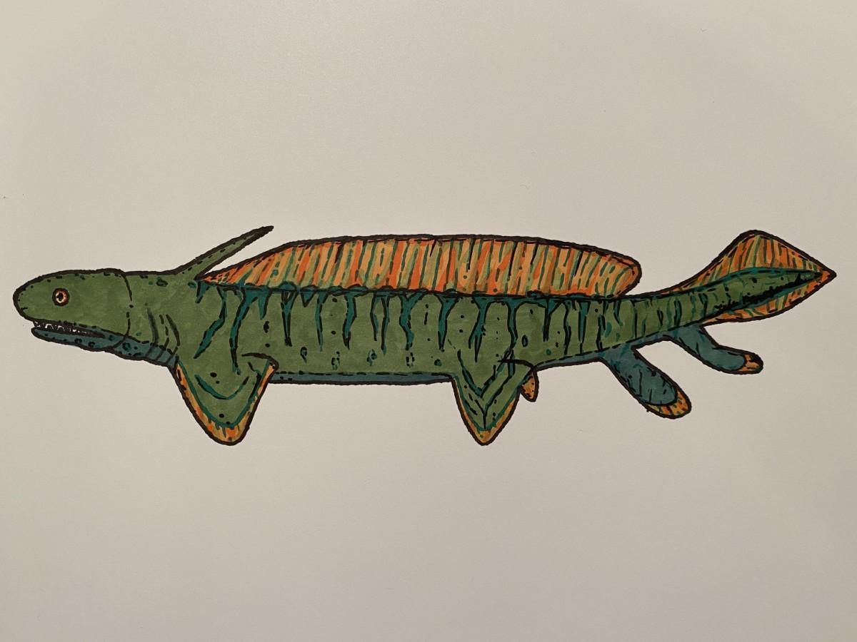 10-bizarre-beasts-that-roamed-the-carboniferous-seas