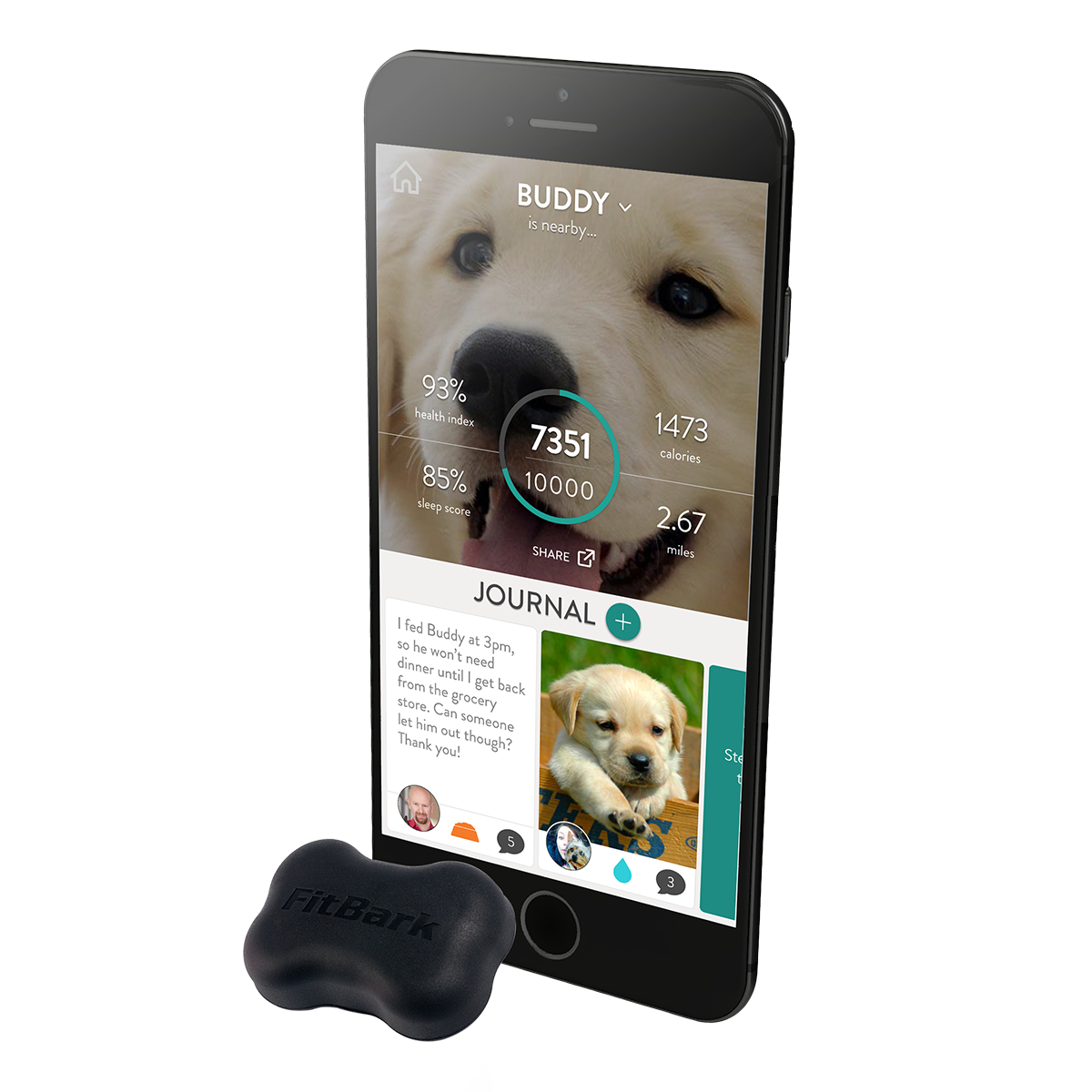Dog Health and Fitness Monitor
